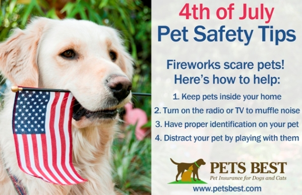 4th_of_July_Safety_Tips_blog4